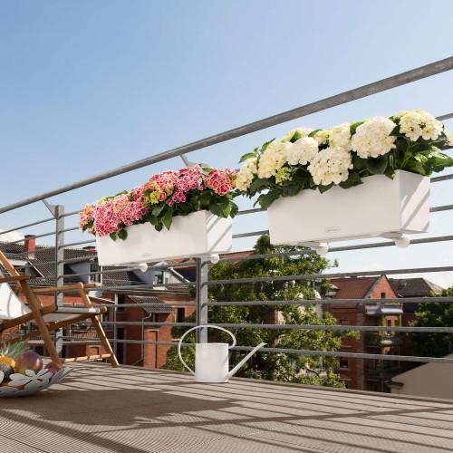 Morze Kwiatów Na Balkonie Skrzynki Balkonowe Lechuza Balconera