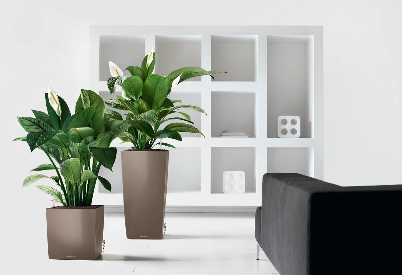 Nowoczesna Donica Kostka Cube Premium Minimalistyczna I Piękna